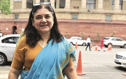 Delhi HC seeks CBI stand on Maneka Gandhi's plea against order for probe in graft case against her
