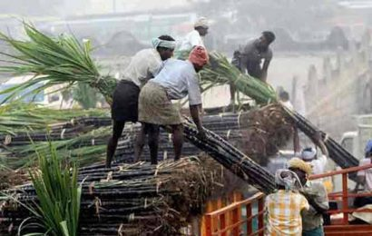 To pay or not to pay in one installment: Maharashtra sugar sector divided on FRP