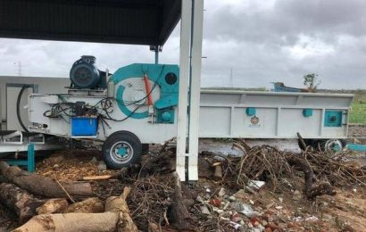 Trees uprooted in Cyclone Nivar in Chennai to be converted into useful products