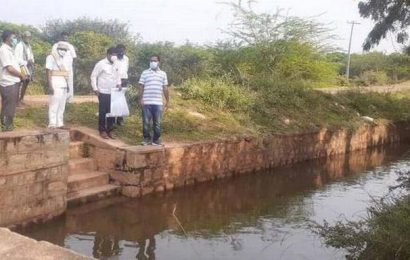 Farmers in Sivaganga district look to relief from TN government for damaged crops
