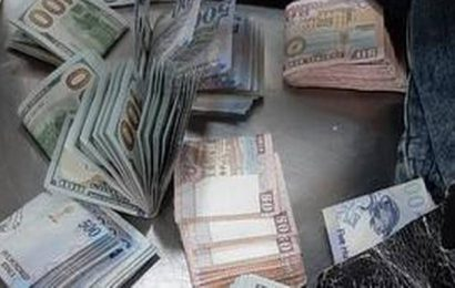 Currencies of different countries seized at Hyderabad airport