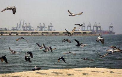 Shipping firm Hafnia says oil tanker hit by 'external source' in Saudi Arabia