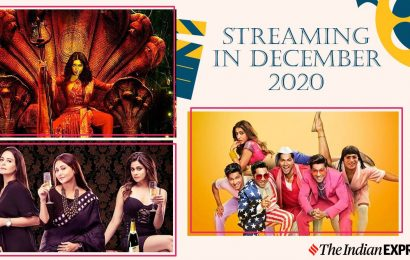 Streaming in December 2020: Black Widows, Durgamati, Coolie No. 1 and more