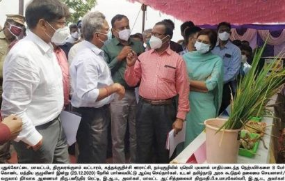Central team inspects crop damage in Pudukottai, Mayiladuthurai districts