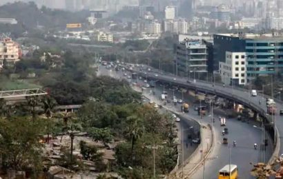 Mumbai Metro and JVLR works are likely to impact 1,719 trees