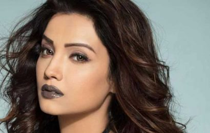 Adaa Khan: I can't do bold characters onscreen just to get instant views and attention, the story needs to justify the part