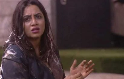 Bigg Boss 14 written update day 66: Vikas says Arshi is trying to be Shilpa Shinde, Kashmera calls Aly Goni a 'good boy'