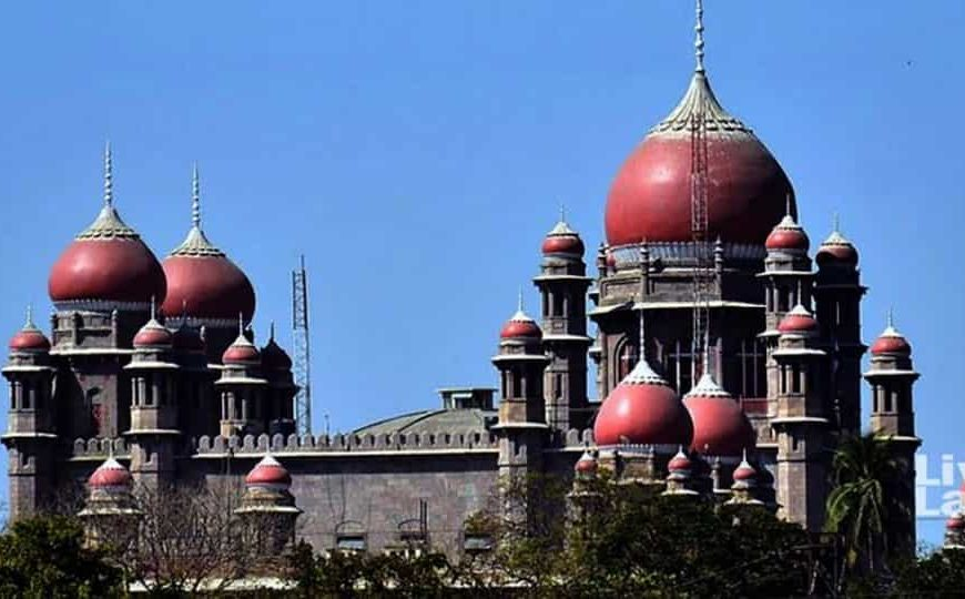 Telangana HC orders pole climbing test for two women rejected for lineman job