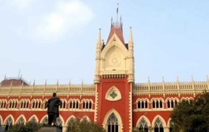None can interfere if an adult marries as per her choice, convert: Calcutta HC