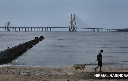 Unseasonal rain causes Mumbai's max temp to dip