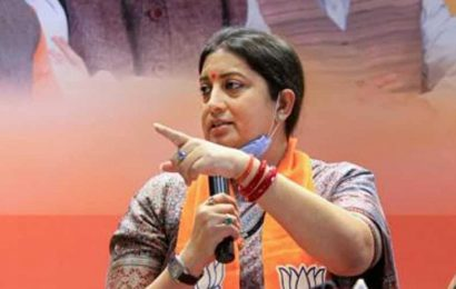 BJP goes full steam for J&K DDC polls; Smriti Irani among star campaigners
