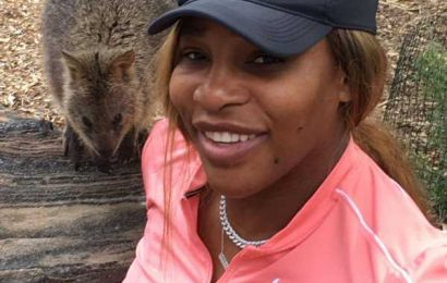Serena takes daughter to the zoo after quarantine