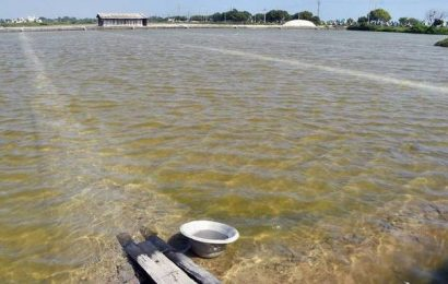 Unseasonal rains delays salt production in Thoothukudi