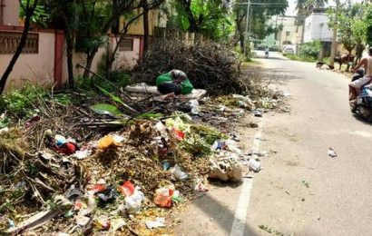 Decision to bring back garbage bins, a welcome one: residents