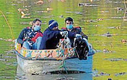 Centre rushes teams to Kerala, Haryana affected by Avian influenza as precautionary measure