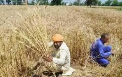 UP ropes in 'progressive' farmers from state to help raise farm incomes