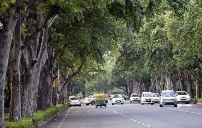 Illegal tree felling in Gandhi memorial, police register FIR