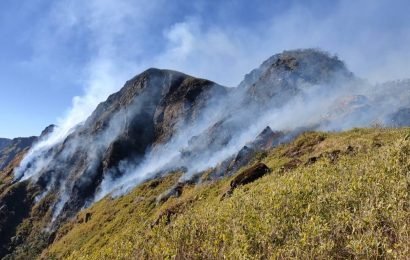 Manipur: Dzuko Valley wildfire brought under control