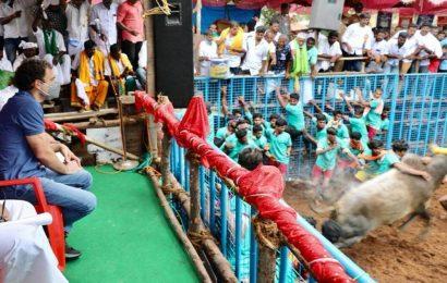 Rahul Gandhi in Tamil Nadu: No one can suppress Tamil spirit