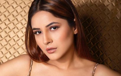 What makes birthday girl Shehnaaz Gill the 'queen of hearts'