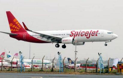 SpiceJet to start 24 new domestic flights