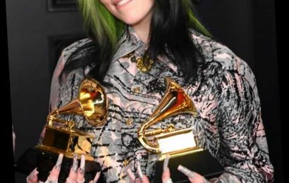 Billie Eilish Went Platinum Blonde & Looks Like A Whole New Person