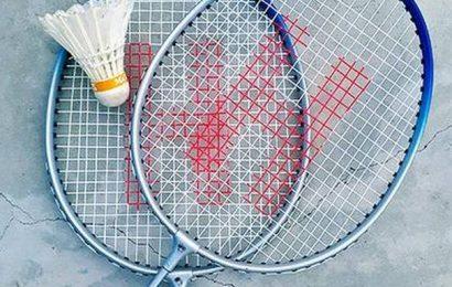 Krishna-Vishnu pair goes down in men's doubles final of Orleans Masters