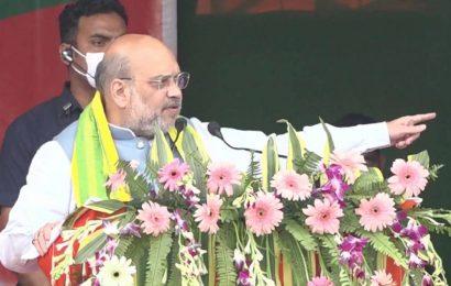 Amit Shah: 'Do you want Assam to be atmanirbhar or Maulana-nirbhar?'