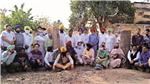 Sangrur: PWD chops trees for road widening, residents hold one-minute silence in protest