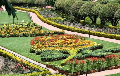 Tourism sector hit in the Nilgiris