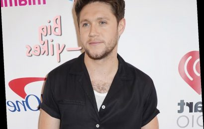Man Arrested After Allegedly Trying To Break Into Niall Horan's Home – TWICE!