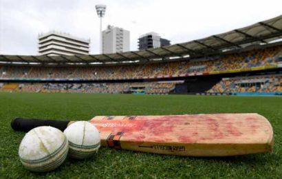 Bamboo-made cricket bats stronger; better than willow