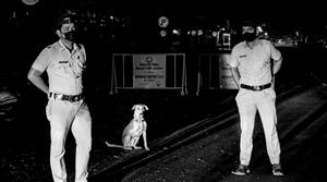 Meet Special Police Officer 'Raja', a three-legged canine keeping Pune lockdown violators in check
