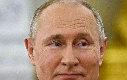 Can extradite cyber criminals to U.S only on reciprocal basis, says Putin