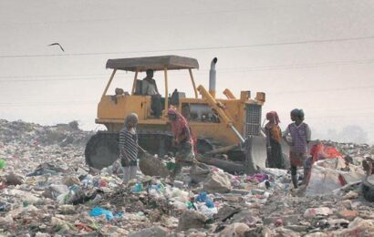 Chandigarh: User charges for waste collection slashed, House calls for fresh tenders for sweeping