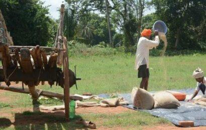 Farmers begin preparations for sowing but worries persist