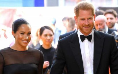 Prince Harry, Meghan Markle Register Domain Names for Daughter Lilibet