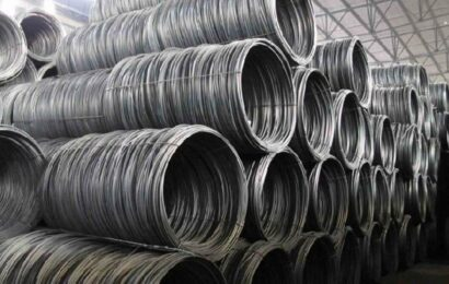 Shyam Metalics sets price band at Rs 303-306 for Rs 909 crore-IPO