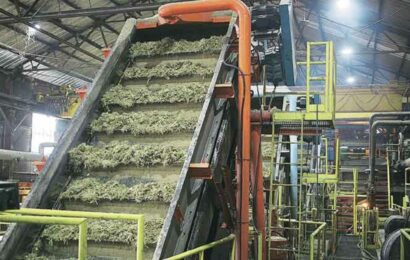 Sugar mills take refuge in legal ambiguity to escape payment of interest for arrears: Raju Shetti