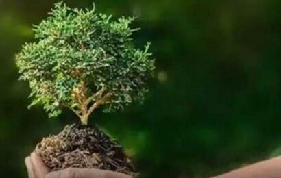 World Environment Day: Replace these five products with eco-friendly alternatives for better living