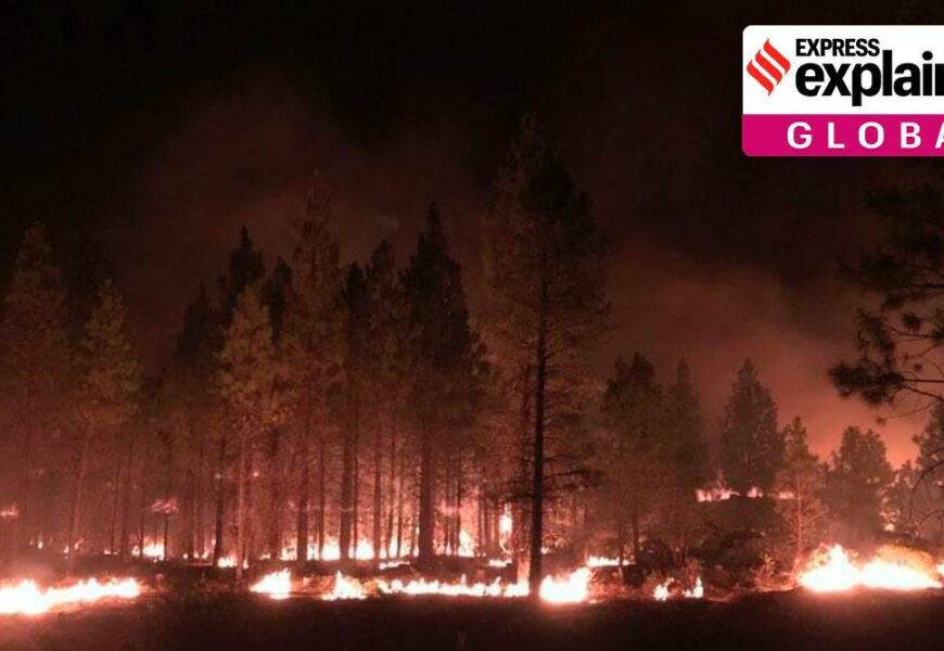 US wildfires are intensifying. Here's why, and what can be done
