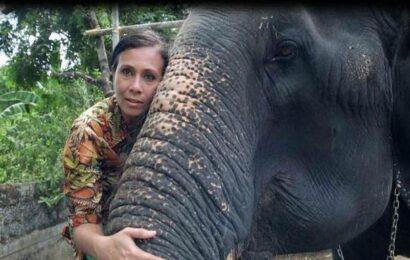 Elephant conservationist Sangita Iyer's 26-part docu-series 'Asian Elephants 101' will be telecast on Nat Geo India on August 12, World Elephant Day