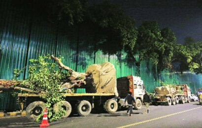 Mumbai: 227 trees to be cut and 23 transplanted for new GST Bhavan