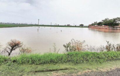 Urban village in North Delhi stuck in time warp: 'No amenities, planning'