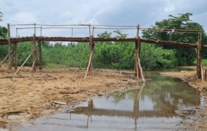 With no government help, Odisha villagers bridge troubled waters on their own