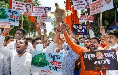 Won't take action against Rane in FIR till Sept. 17, Maharashtra govt tells HC