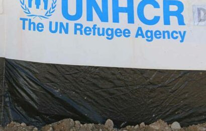 A total of 736 Afghans recorded for new registration in India from August 1 to September 11: UNHCR