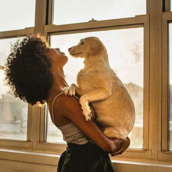 ASK POOJA: Emotionally Ready for a Pet?