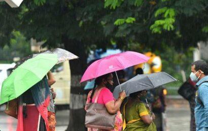 Heavy rains pound north Telangana districts