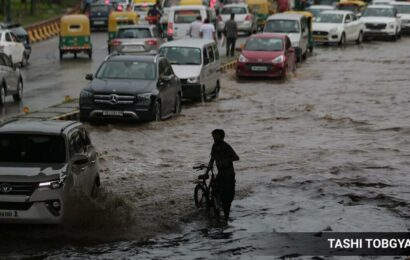 Light to moderate rainfall expected in Delhi on Friday: IMD